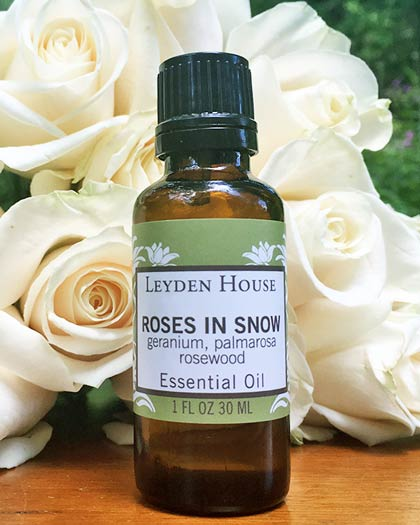 Photo of Roses in Snow essential oil blend