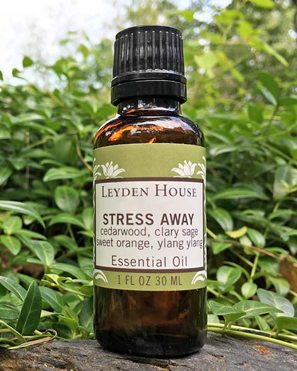 Photo of Stress Away essential oil blend from Leyden House. Blend comes in an amber bottle with pretty green labels.